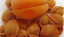 абрикосовые косточки