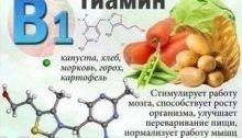 действие витамина В1