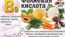 действие витамина В9