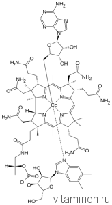 Дезоксиаденозилкобаламин